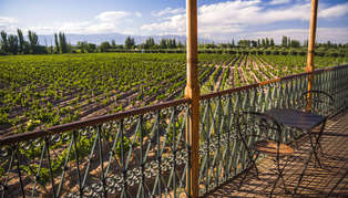 balcony overlooking vineyards at club tapiz, a bodega (winery) in the maipu area of mendoza, mendoza province, argentina_314_179